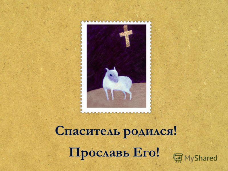 Спаситель родился! Прославь Его!