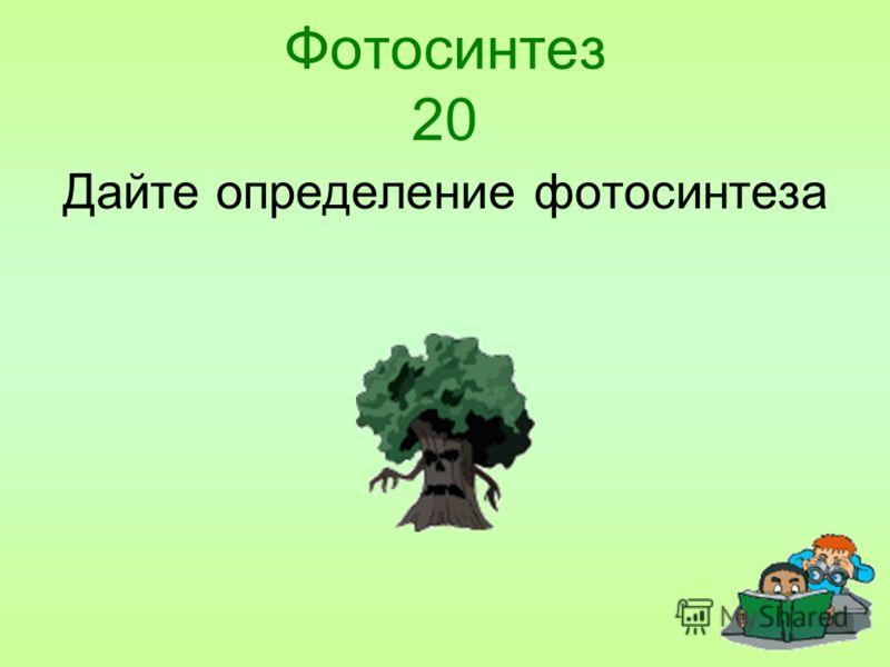 Фотосинтез 20 Дайте определение фотосинтеза