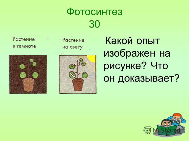 Фотосинтез 30 Какой опыт изображен на рисунке? Что он доказывает?