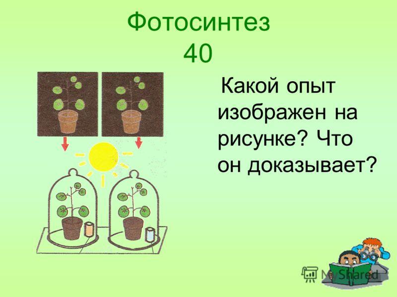 Фотосинтез 40 Какой опыт изображен на рисунке? Что он доказывает?