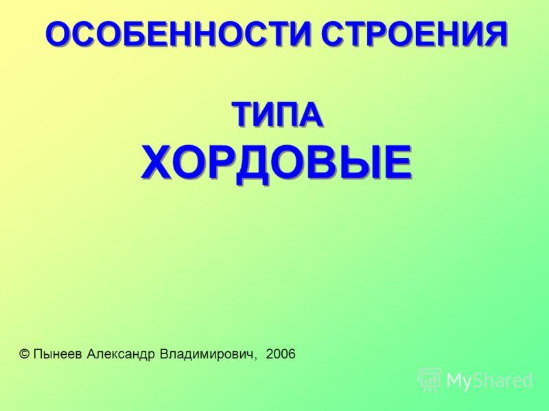ОСОБЕННОСТИ СТРОЕНИЯ ТИПА ХОРДОВЫЕ © Пынеев Александр Владимирович, 2006