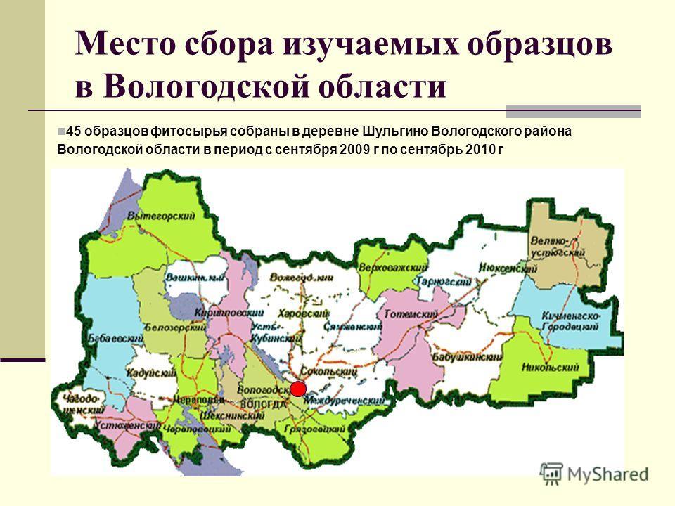 Место сбора изучаемых образцов в Вологодской области 45 образцов фитосырья собраны в деревне Шульгино Вологодского района Вологодской области в период с сентября 2009 г по сентябрь 2010 г