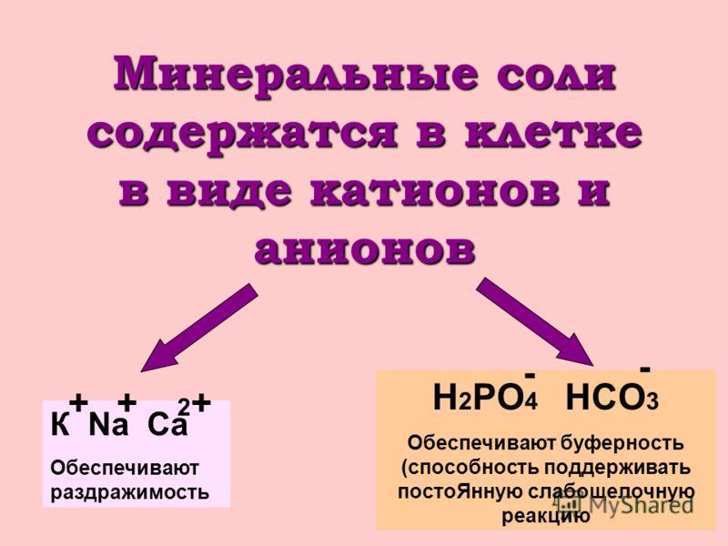 Минеральные соли содержатся в клетке в виде катионов и анионов К Na Ca Обеспечивают раздражимость ++ 2+2+ H 2 PO 4 HCO 3 Обеспечивают буферность (способность поддерживать постоЯнную слабощелочную реакцию - -