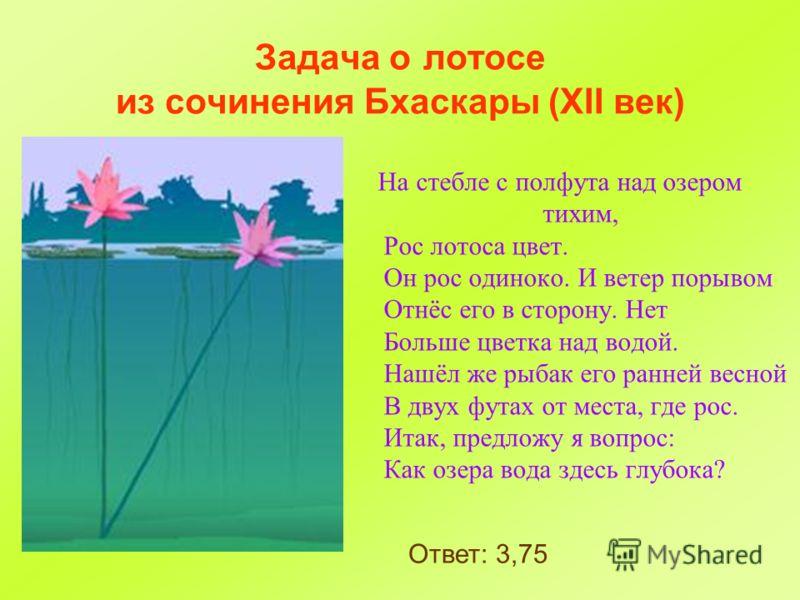 Задача о лотосе из сочинения Бхаскары (XII век) На стебле с полфута над озером тихим, Рос лотоса цвет. Он рос одиноко. И ветер порывом Отнёс его в сторону. Нет Больше цветка над водой. Нашёл же рыбак его ранней весной В двух футах от места, где рос.