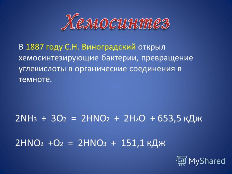 2NH 3 + 3O 2 = 2HNO 2 + 2H 2 O + 653,5 кДж 2HNO 2 +O 2 = 2НNO 3 + 151,1 кДж В 1887 году С.Н. Виноградский открыл хемосинтезирующие бактерии, превращение углекислоты в органические соединения в темноте.