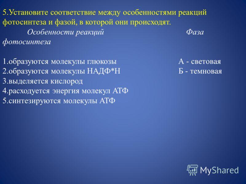 5.Установите соответствие между особенностями реакций фотосинтеза и фазой, в которой они происходят. Особенности реакций Фаза фотосинтеза 1.образуются молекулы глюкозы А - световая 2.образуются молекулы НАДФ*Н Б - темновая 3.выделяется кислород 4.рас