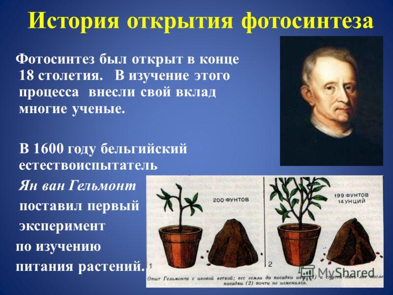 История открытия фотосинтеза Фотосинтез был открыт в конце 18 столетия. В изучение этого процесса внесли свой вклад многие ученые. В 1600 году бельгийский естествоиспытатель Ян ван Гельмонт поставил первый эксперимент по изучению питания растений. Ян