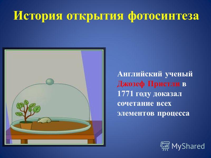 История открытия фотосинтеза Английский ученый Джозеф Пристли в 1771 году доказал сочетание всех элементов процесса