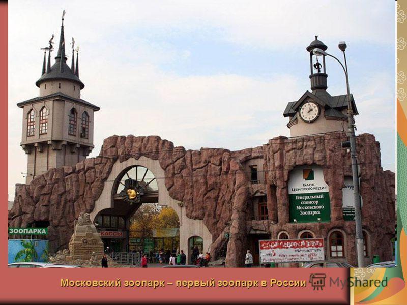 Московский зоопарк – первый зоопарк в России