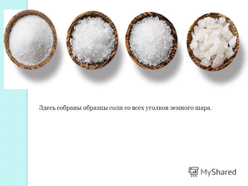 Здесь собраны образцы соли со всех уголков земного шара.
