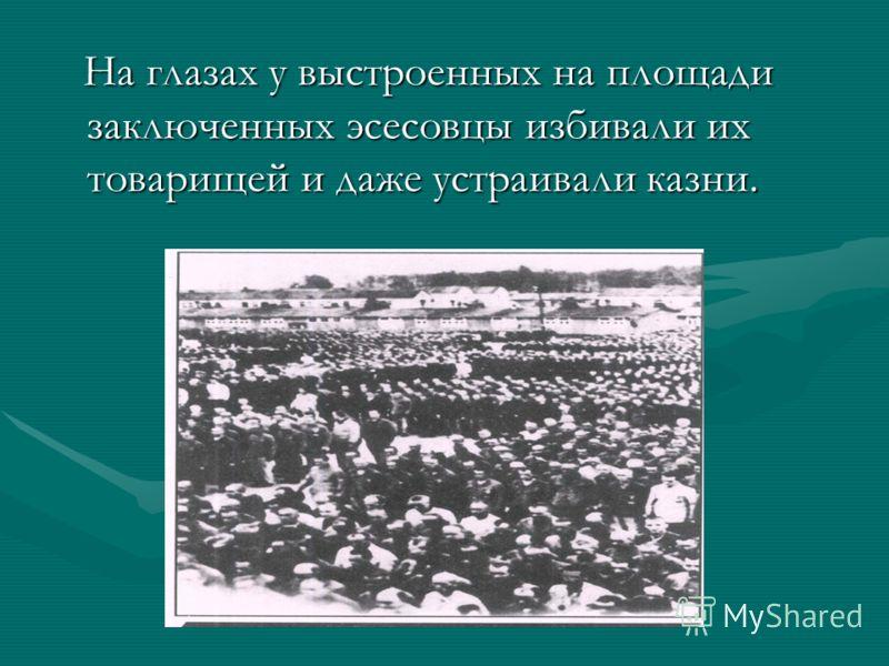 На глазах у выстроенных на площади заключенных эсесовцы избивали их товарищей и даже устраивали казни. На глазах у выстроенных на площади заключенных эсесовцы избивали их товарищей и даже устраивали казни.