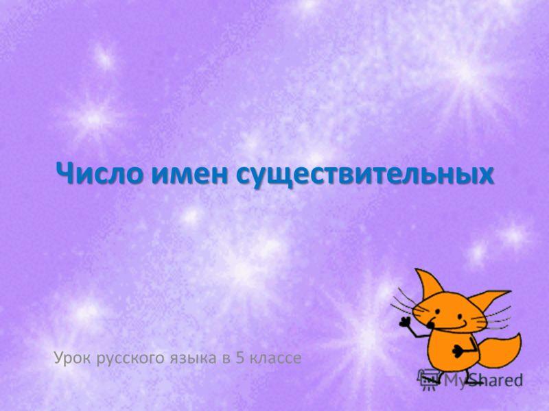 Число имен существительных Урок русского языка в 5 классе