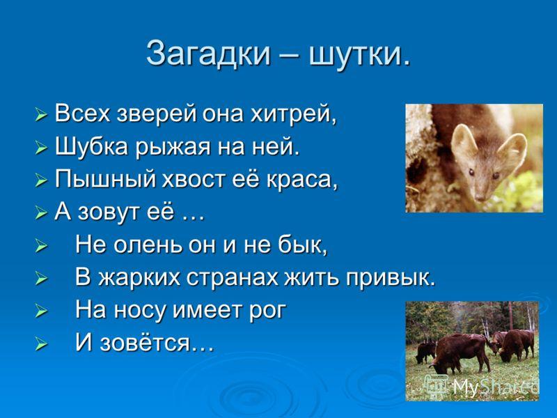 Загадки – шутки. Всех зверей она хитрей, Всех зверей она хитрей, Шубка рыжая на ней. Шубка рыжая на ней. Пышный хвост её краса, Пышный хвост её краса, А зовут её … А зовут её … Не олень он и не бык, Не олень он и не бык, В жарких странах жить привык.