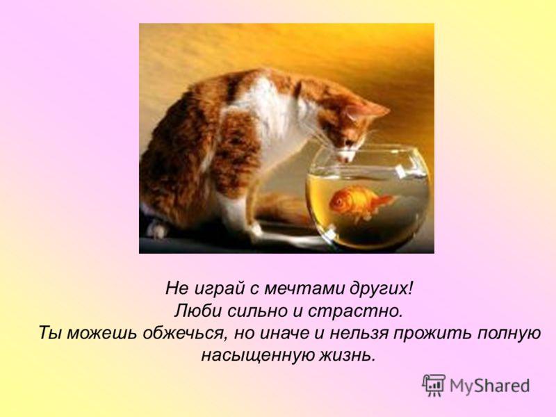 Не играй с мечтами других! Люби сильно и страстно. Ты можешь обжечься, но иначе и нельзя прожить полную насыщенную жизнь.