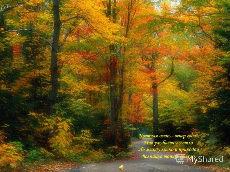 Цветная осень - вечер года - Мне улыбается светло. Но между мною и природой Возникло тонкое стекло.