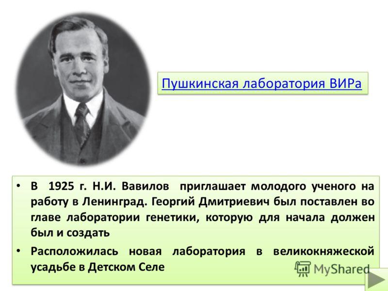 В 1925 г. Н.И. Вавилов приглашает молодого ученого на работу в Ленинград. Георгий Дмитриевич был поставлен во главе лаборатории генетики, которую для начала должен был и создать Расположилась новая лаборатория в великокняжеской усадьбе в Детском Селе