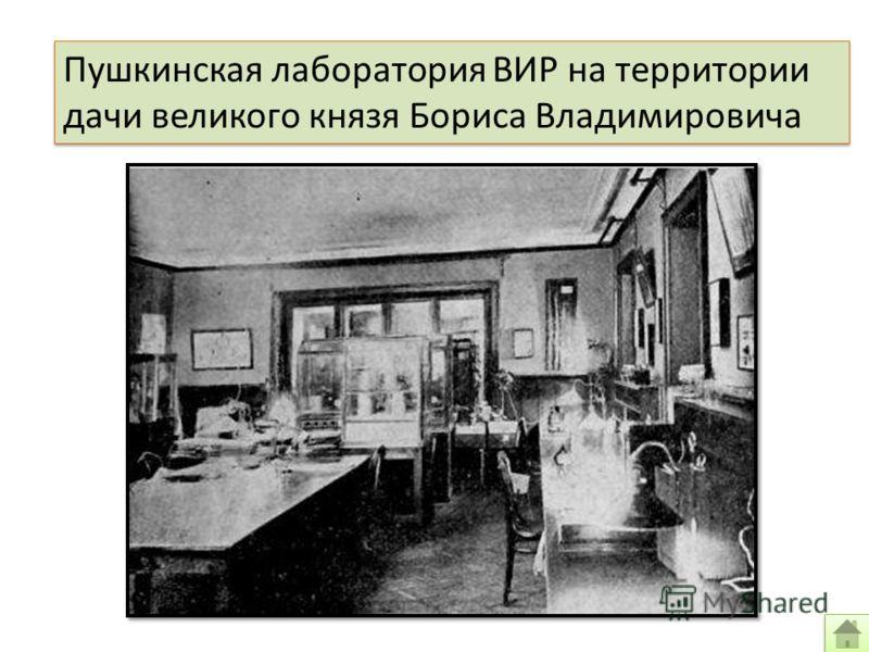 Пушкинская лаборатория ВИР на территории дачи великого князя Бориса Владимировича