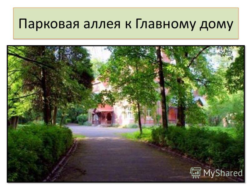 Парковая аллея к Главному дому