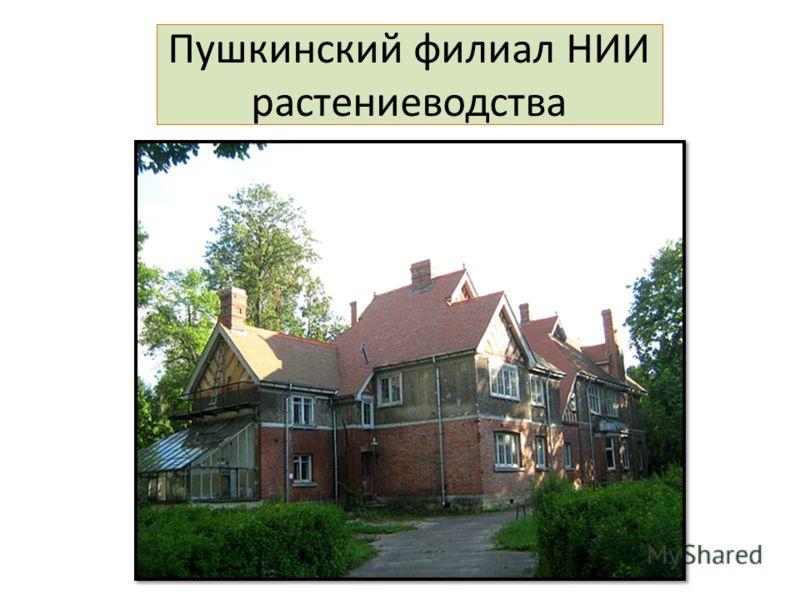 Пушкинский филиал НИИ растениеводства