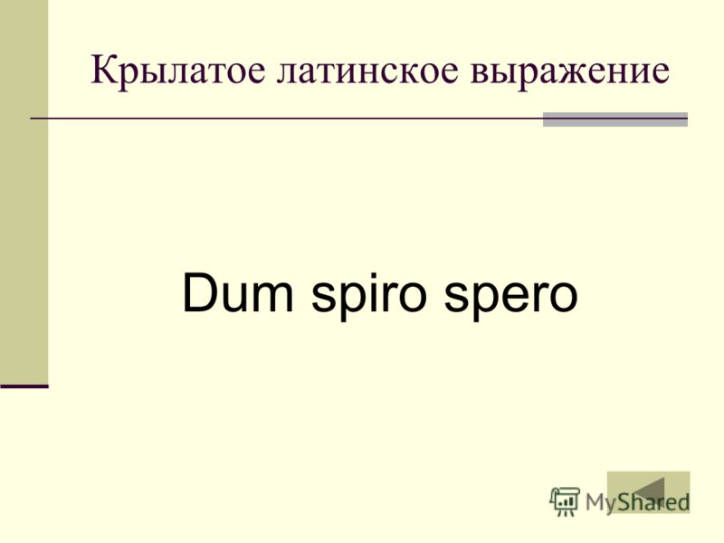 Крылатое латинское выражение Dum spiro spero