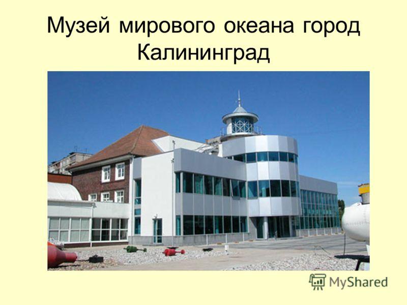 Музей мирового океана город Калининград