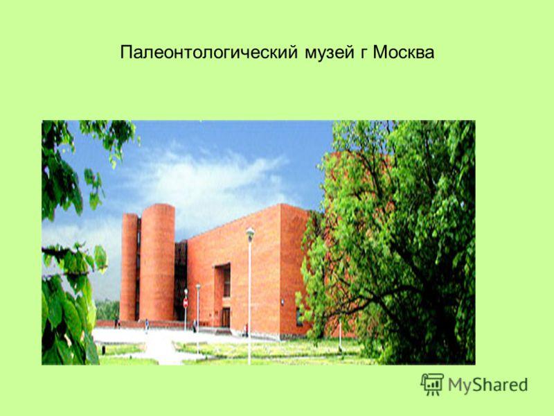 Палеонтологический музей г Москва