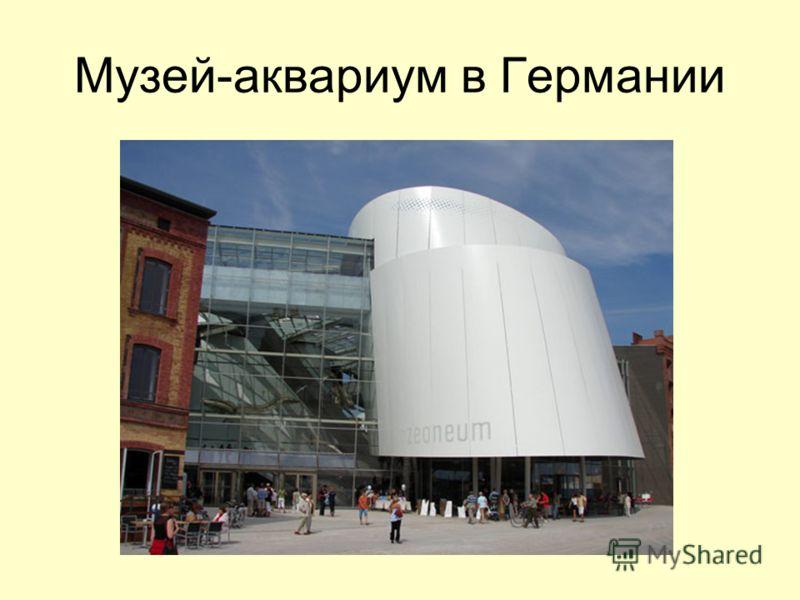 Музей-аквариум в Германии