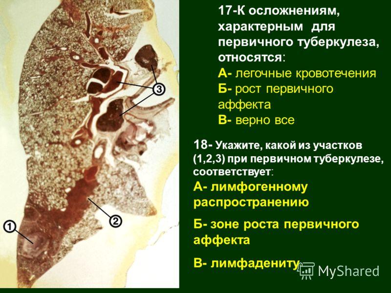 17-К осложнениям, характерным для первичного туберкулеза, относятся: А- легочные кровотечения Б- рост первичного аффекта В- верно все 18- Укажите, какой из участков (1,2,3) при первичном туберкулезе, соответствует: А- лимфогенному распространению Б-