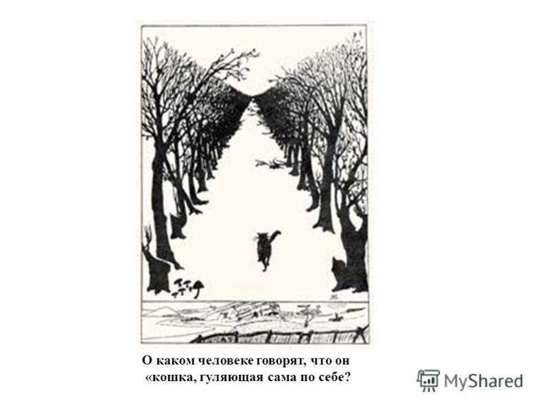 О каком человеке говорят, что он «кошка, гуляющая сама по себе?