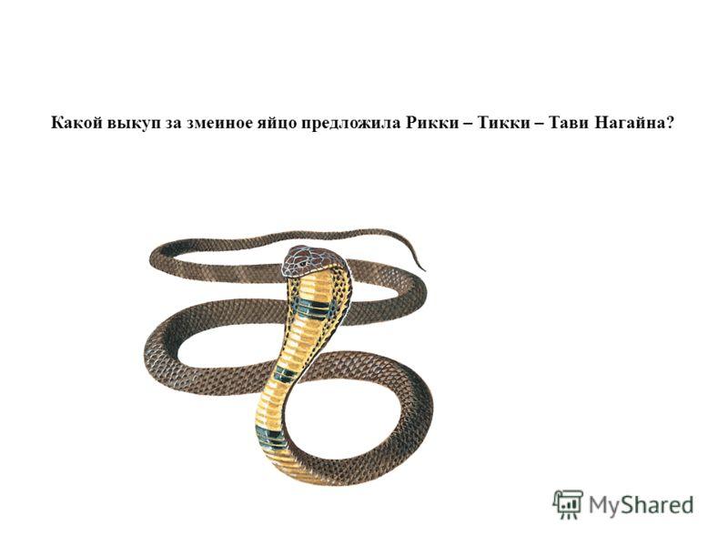 Какой выкуп за змеиное яйцо предложила Рикки – Тикки – Тави Нагайна?
