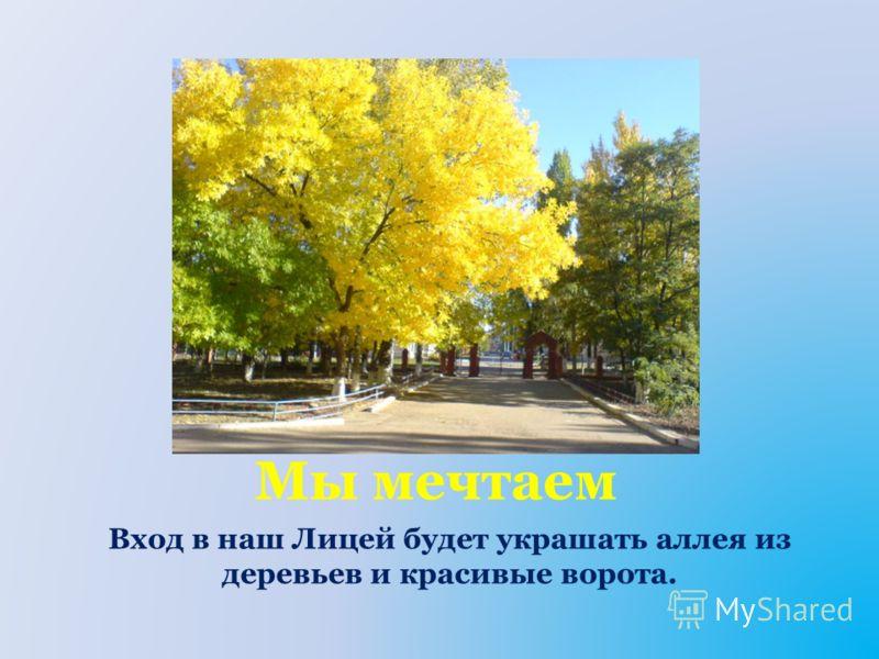Мы мечтаем Вход в наш Лицей будет украшать аллея из деревьев и красивые ворота.