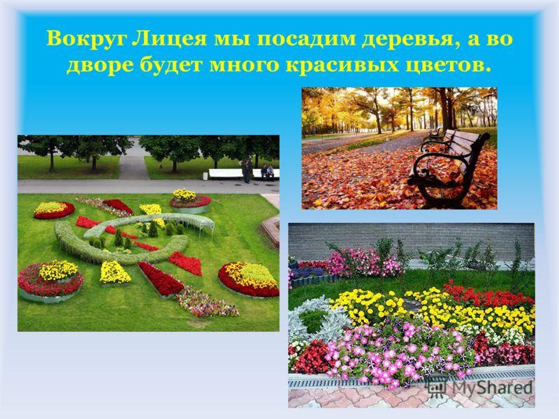 Вокруг Лицея мы посадим деревья, а во дворе будет много красивых цветов.