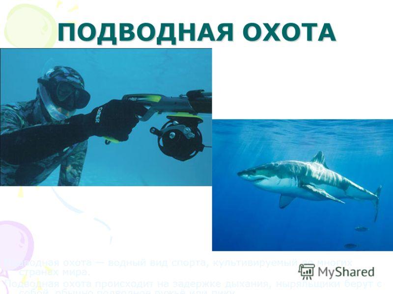 ФРИ- ДАЙВИНГ Погружение под воду без специальных аппаратов. Подводное плавание на задержке дыхания, так можно пробыть под водой 5 минут.