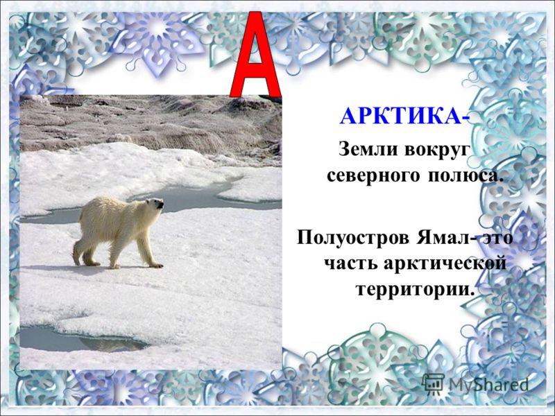 АРКТИКА- Земли вокруг северного полюса. Полуостров Ямал- это часть арктической территории.