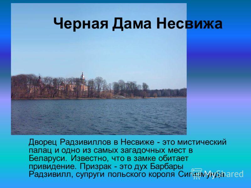Дворец Радзивиллов в Несвиже - это мистический палац и одно из самых загадочных мест в Беларуси. Известно, что в замке обитает привидение. Призрак - это дух Барбары Радзивилл, супруги польского короля Сигизмунда. Черная Дама Несвижа