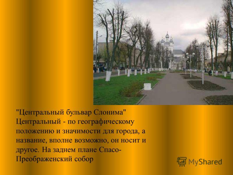 Центральный бульвар Слонима Центральный - по географическому положению и значимости для города, а название, вполне возможно, он носит и другое. На заднем плане Спасо- Преображенский собор