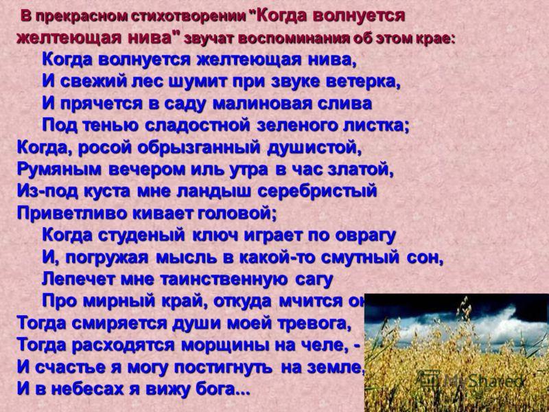 В прекрасном стихотворении