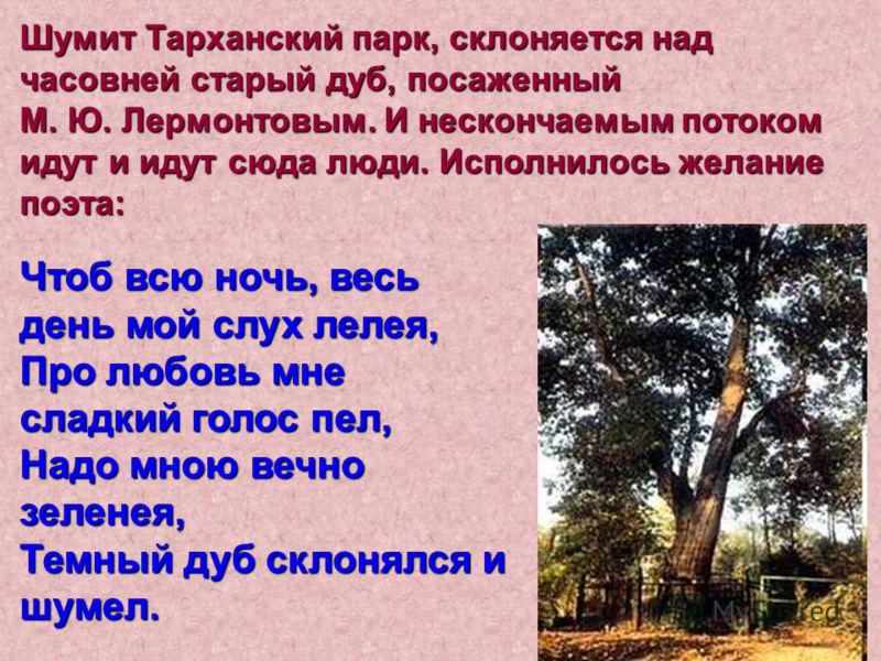 Шумит Тарханский парк, склоняется над часовней старый дуб, посаженный М. Ю. Лермонтовым. И нескончаемым потоком идут и идут сюда люди. Исполнилось желание поэта: Чтоб всю ночь, весь день мой слух лелея, Про любовь мне сладкий голос пел, Надо мною веч