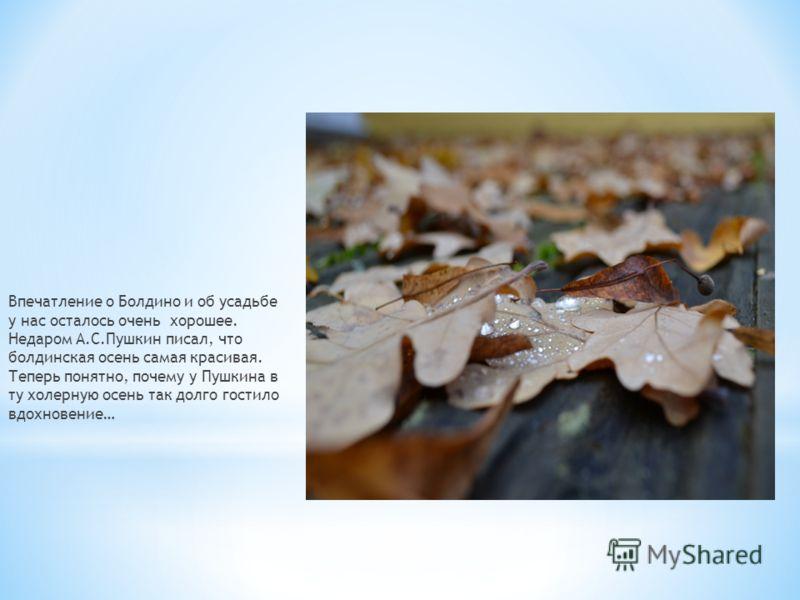 Впечатление о Болдино и об усадьбе у нас осталось очень хорошее. Недаром А.С.Пушкин писал, что болдинская осень самая красивая. Теперь понятно, почему у Пушкина в ту холерную осень так долго гостило вдохновение…