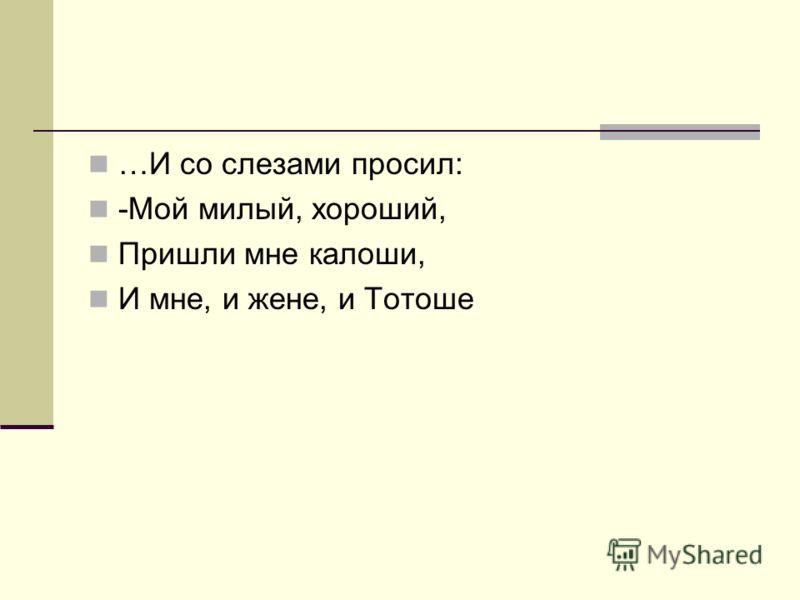 …И со слезами просил: -Мой милый, хороший, Пришли мне калоши, И мне, и жене, и Тотоше