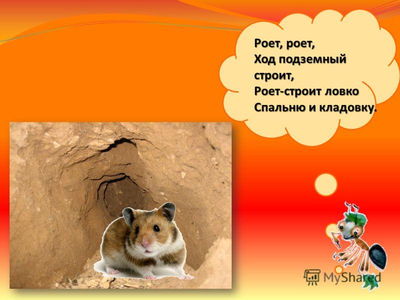 Многие животные строят жилища для себя и своего потомства.