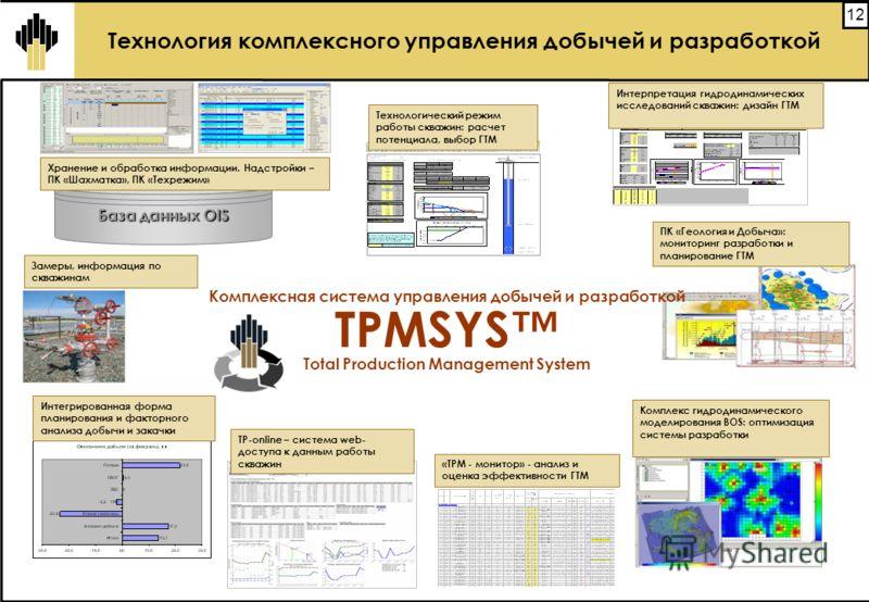 12 База данных OIS Входные данные Забойное давление ПродуктивностьПотенциал Комплексная система управления добычей и разработкой TPMSYS Total Production Management System Технология комплексного управления добычей и разработкой Интегрированная форма