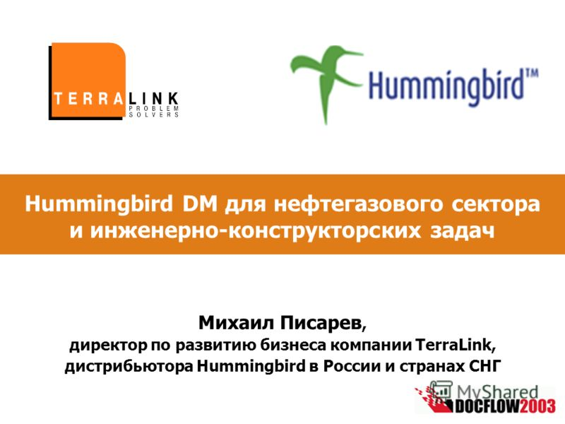 Hummingbird DM для нефтегазового сектора и инженерно-конструкторских задач Михаил Писарев, директор по развитию бизнеса компании TerraLink, дистрибьютора Hummingbird в России и странах СНГ