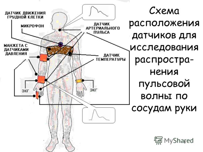 8 Схема расположения датчиков для исследования распростра- нения пульсовой волны по сосудам руки