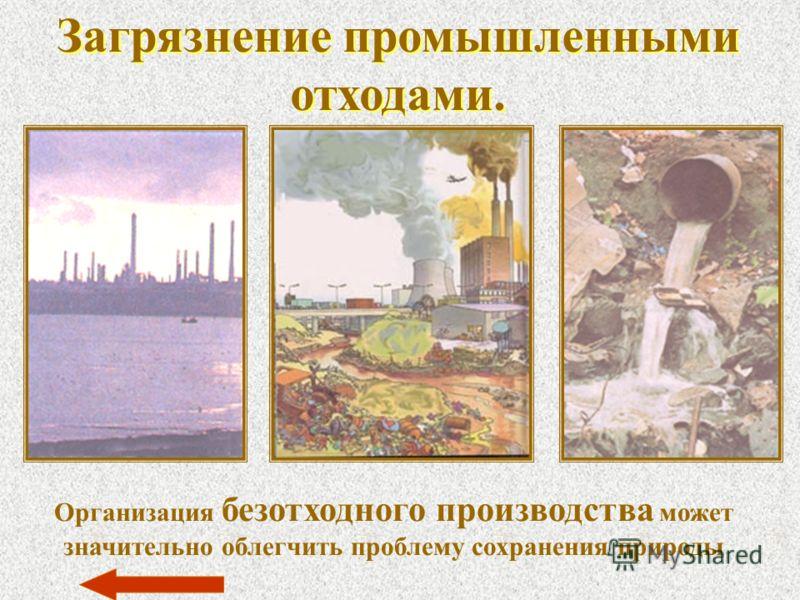 Загрязнение промышленными отходами. Организация безотходного производства может значительно облегчить проблему сохранения природы