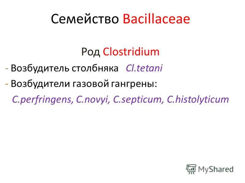 Семейство Bacillaceae Род Clostridium - Возбудитель столбняка Cl.tetani - Возбудители газовой гангрены: C.perfringens, C.novyi, C.septicum, C.histolyticum