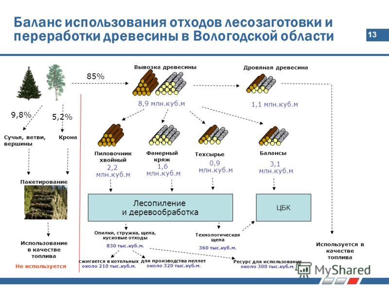 13 Баланс использования отходов лесозаготовки и переработки древесины в Вологодской области 85% Вывозка древесины Пакетирование 9,8% Крона 5,2% Сучья, ветви, вершины Использование в качестве топлива 8,9 млн.куб.м Дровяная древесина 1,1 млн.куб.м Испо