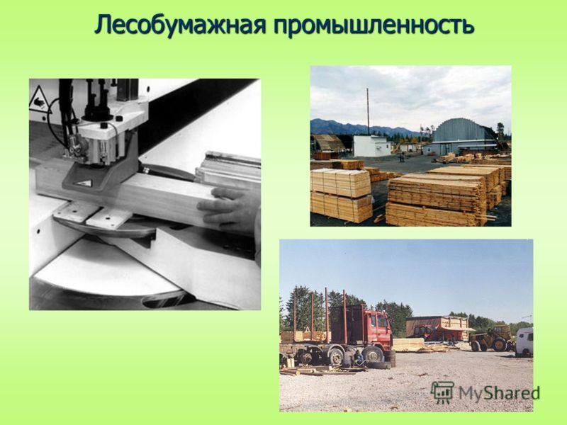 Лесобумажная промышленность