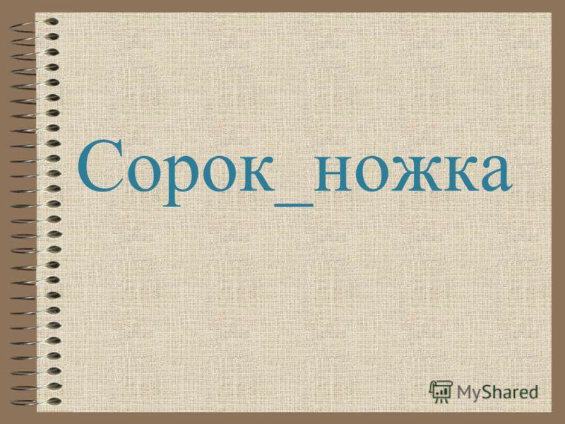 Сорок_ножка