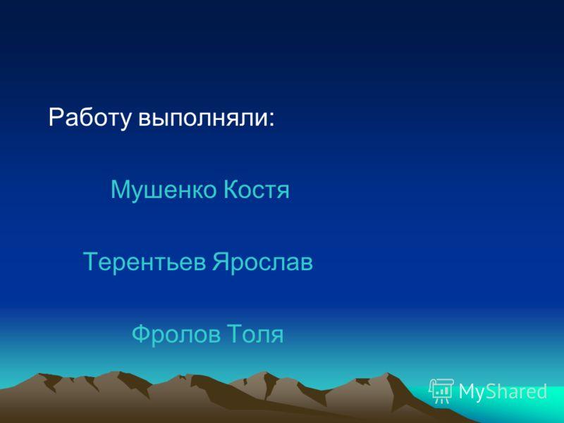Работу выполняли: Мушенко Костя Терентьев Ярослав Фролов Толя